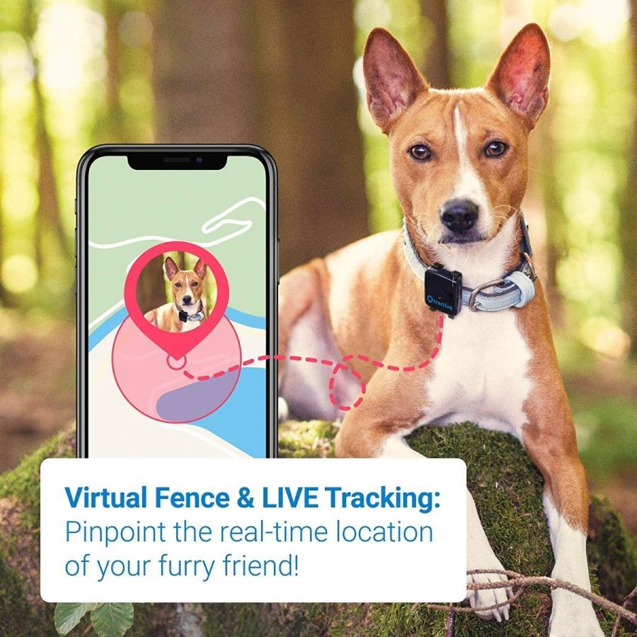 Tractive 3G 犬用GPSトラッカー - 犬の安全を守るペットファインダ(日本国内唯一の正規代理店)|ubtc2|06