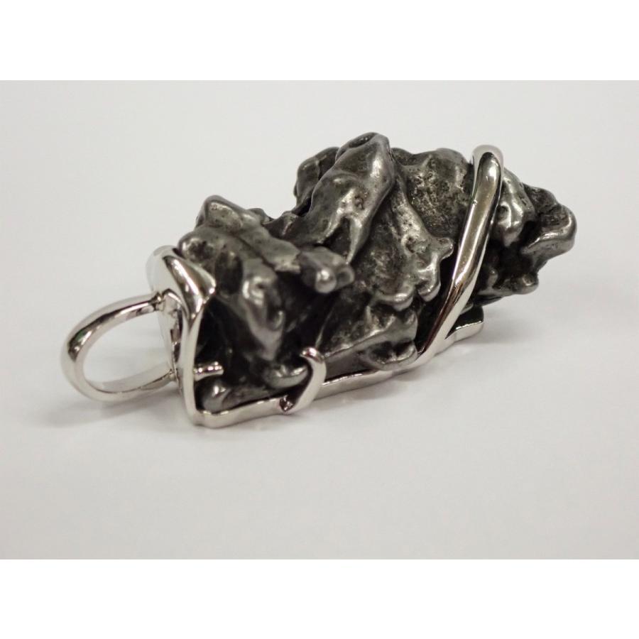 人気定番の カンポ・デル・シエロ隕石+プラチナ ペンダントトップ Gibeon meteorite, シママキグン 12f5fc1b