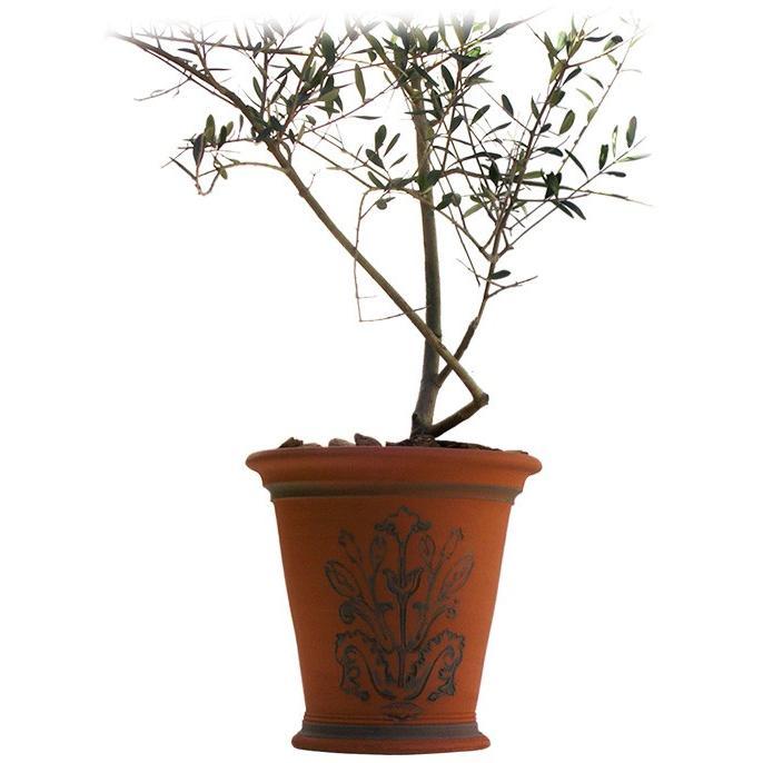 ウィッチフォード テラコッタ 植木鉢 《ジェキルフラワー》10号鉢相当 英国(イギリス)製 Whichford JEKYLL FLOWERPOT