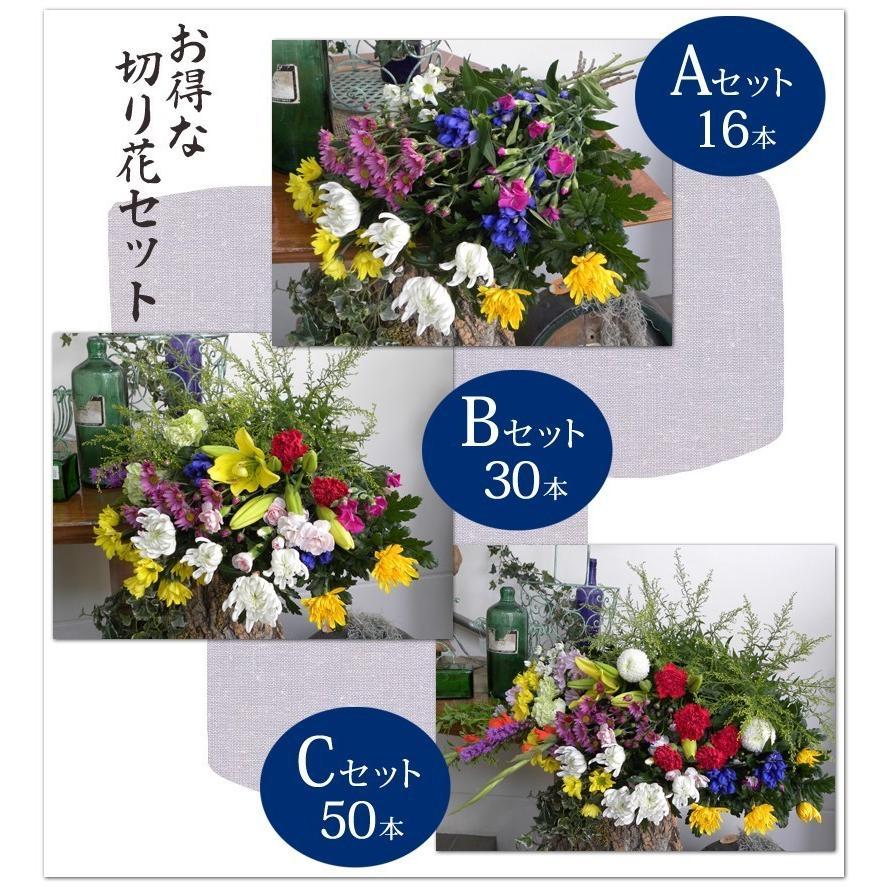 お悔やみ用   切花 花材50本セット(C)|uekibachi|03