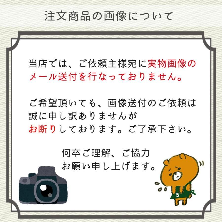 お悔やみ用   切花 花材50本セット(C)|uekibachi|04