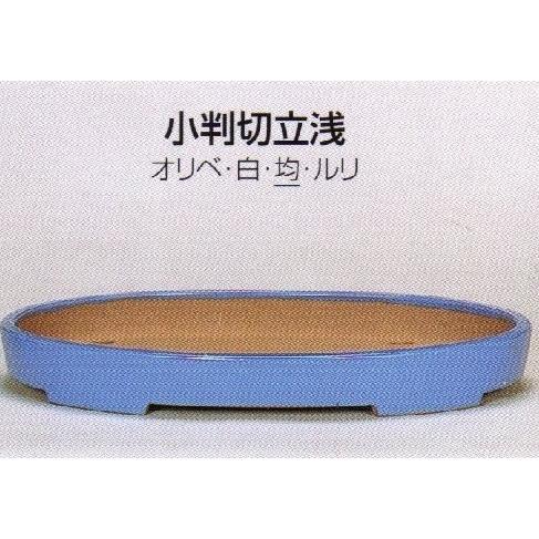 植木鉢 陶器 常滑焼 【角山】小判切立浅盆栽鉢(15号_均)