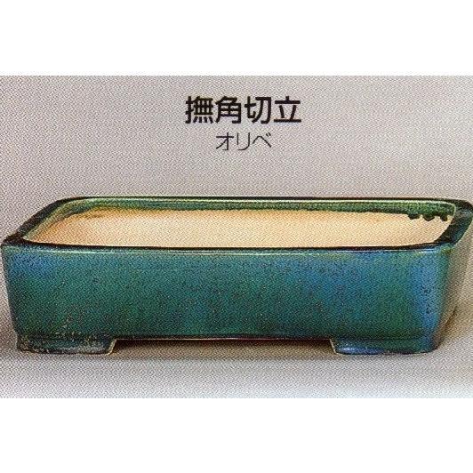 植木鉢 陶器 常滑焼 【鴻陽陶園】撫角切立盆栽鉢(8号_オリベ)