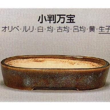植木鉢 陶器 常滑焼 【鴻陽陶園】小判万宝盆栽鉢(12号_生子)