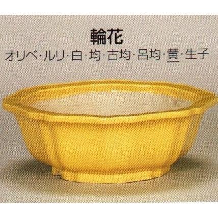 植木鉢 陶器 常滑焼 【鴻陽陶園】輪花盆栽鉢(12号_黄)