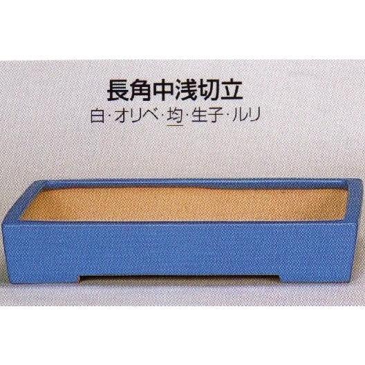 植木鉢 陶器 常滑焼 【誠山】長角中浅切立盆栽鉢(14号_均)