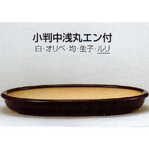 植木鉢 陶器 常滑焼 【誠山】小判中浅丸エン付盆栽鉢(23号_ルリ)