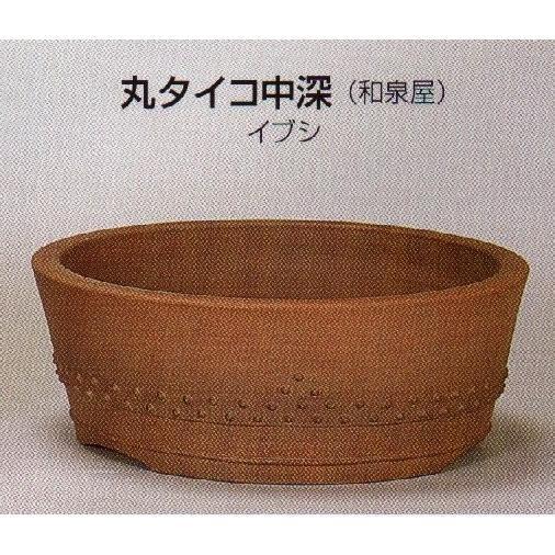 植木鉢 陶器 常滑焼 41A13【和泉屋】丸タイコ中深盆栽鉢(13号_イブシ)