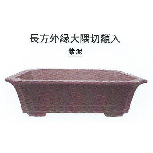 植木鉢 陶器 長方エン付大隅切額入盆栽鉢(23号紫泥)