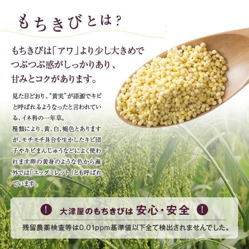 送料無料 もちきび 1kg モチ キビ 黍 稷 きび 五穀 黄実 proso millet ...