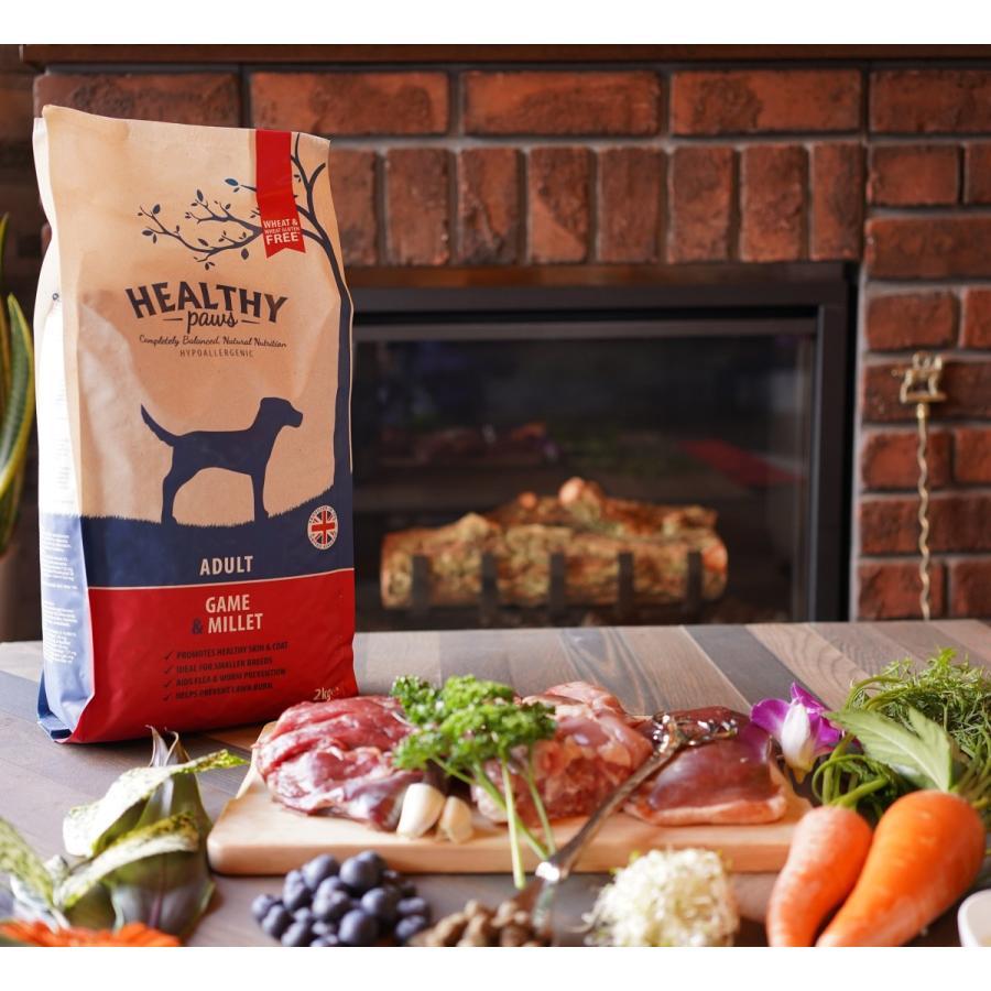 成犬用ホリスティックドッグフード ヘルシーポーズゲーム&ミレット 2kg|ukfood