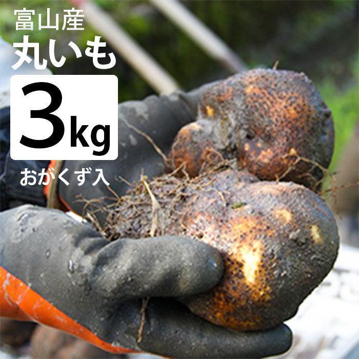 林農産 富山県産 丸いも(3kg・おがくず入り)- とろろ以外にも、包み揚げ、お好み焼き、サラダにしても美味しい umaimura