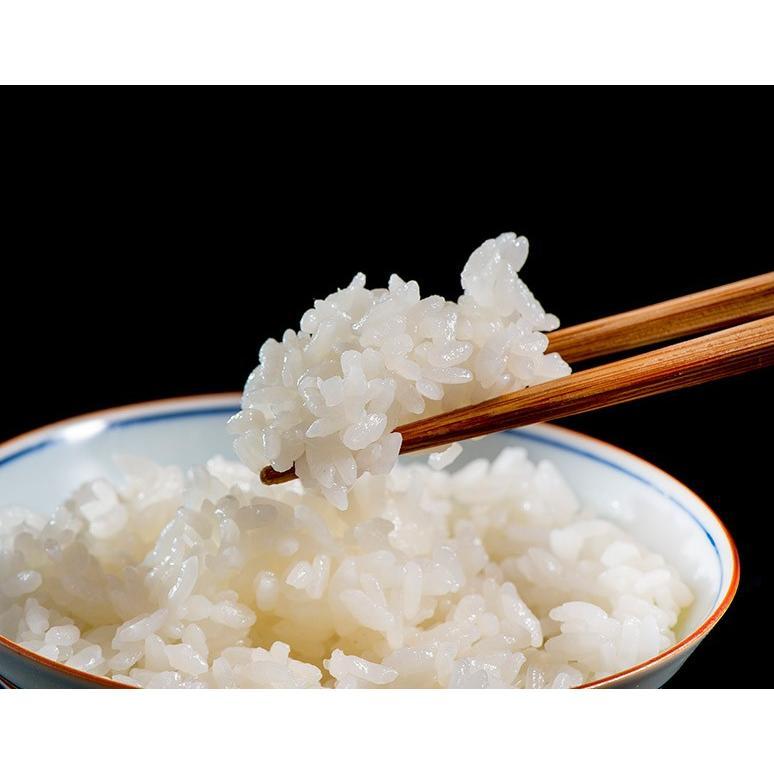 米 送料無料 福島県産 特別栽培米 天栄米 5キロ 精米|umeebeccyasannriku|06
