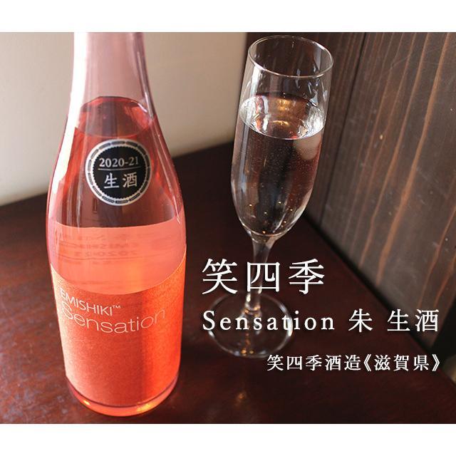 笑四季 Sensation 朱 生酒 720ml [笑四季酒造] umeshu 02