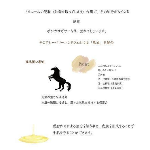 【ウナ・ルーナ】シーベリーハンドジェル(ラベンダーの香り)携帯用 保湿 エッセンス 馬油 手荒れ防止 敏感肌 乾燥 アルコール高配合 アロマ unaluna 04