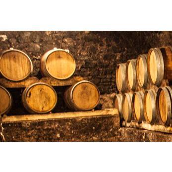 プリミティーヴォ・ディ・マンドゥーリア[2018]ポッジョ・レ・ヴォルピ 赤 750ml Primitivo di Manduria DOC[POGGIO LE VOLPI] イタリア プーリア 赤ワイン|unibiswine|06