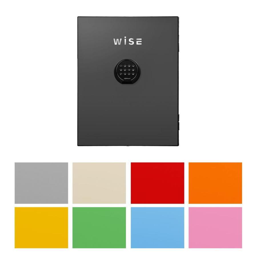 diplomatディプロマット社 プレミアムセーフ WISE(ワイズ) WISE(ワイズ) 耐火デザイン金庫用フロントパネル [B・ライトブルー・WS500FPB]