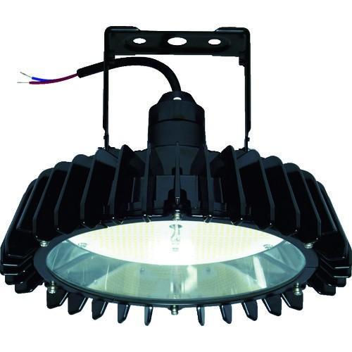 (照明器具)日立 高天井用LEDランプ アームタイプ 特殊環境対応 防湿・防雨形(オイルミスト・粉じん対応) WGBME16AMNC1