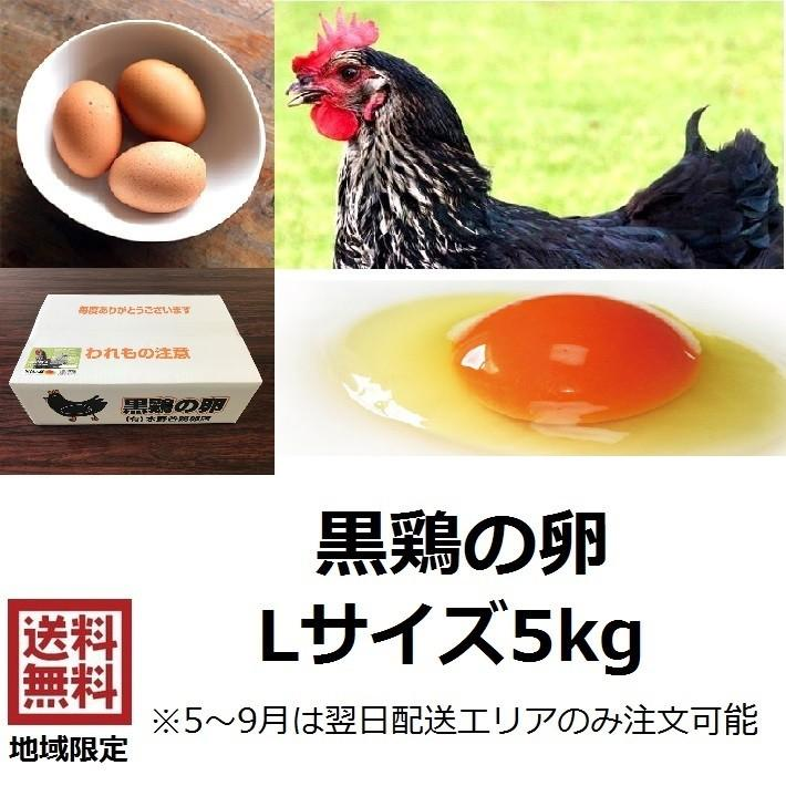 卵 黒鶏の卵 Lサイズ 5kg 約70〜75個 送料無料でお届けします セール特別価格 黒鶏 たまご 御中元 生卵 鶏卵 生たまご 卵かけご飯 御歳暮 赤玉