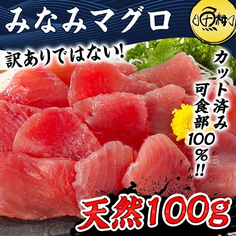 まぐろ マグロ刺身 天然みなみマグロ 赤身 100g カット済み 2021 日本未発売 血合い処理済み可食部100% 鮪 お中元 プレゼント ギフト