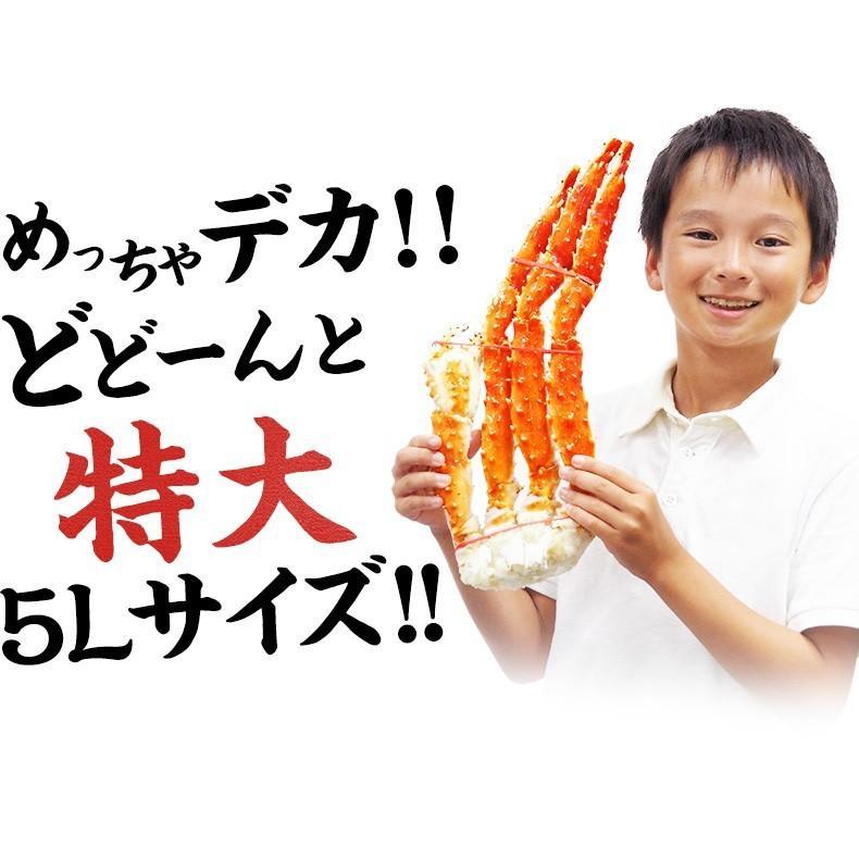 タラバガニ ボイル 5Lサイズ 1kg 肩 たらばがに 冷凍 ギフト かに カニ お取り寄せグルメ 海鮮 2~3人前|uoko-ec|12