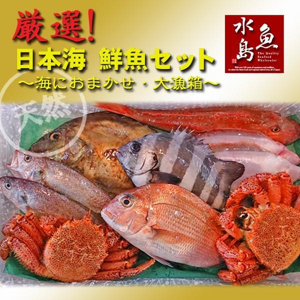 厳選 日本海の鮮魚セット 海におまかせ 営業 激安☆超特価 ちょっと贅沢編 大漁箱 大満足詰め合わせ