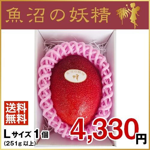 魚沼の妖精 Lサイズ1個 オンラインショッピング ショッピング 7月より 順次発送致します