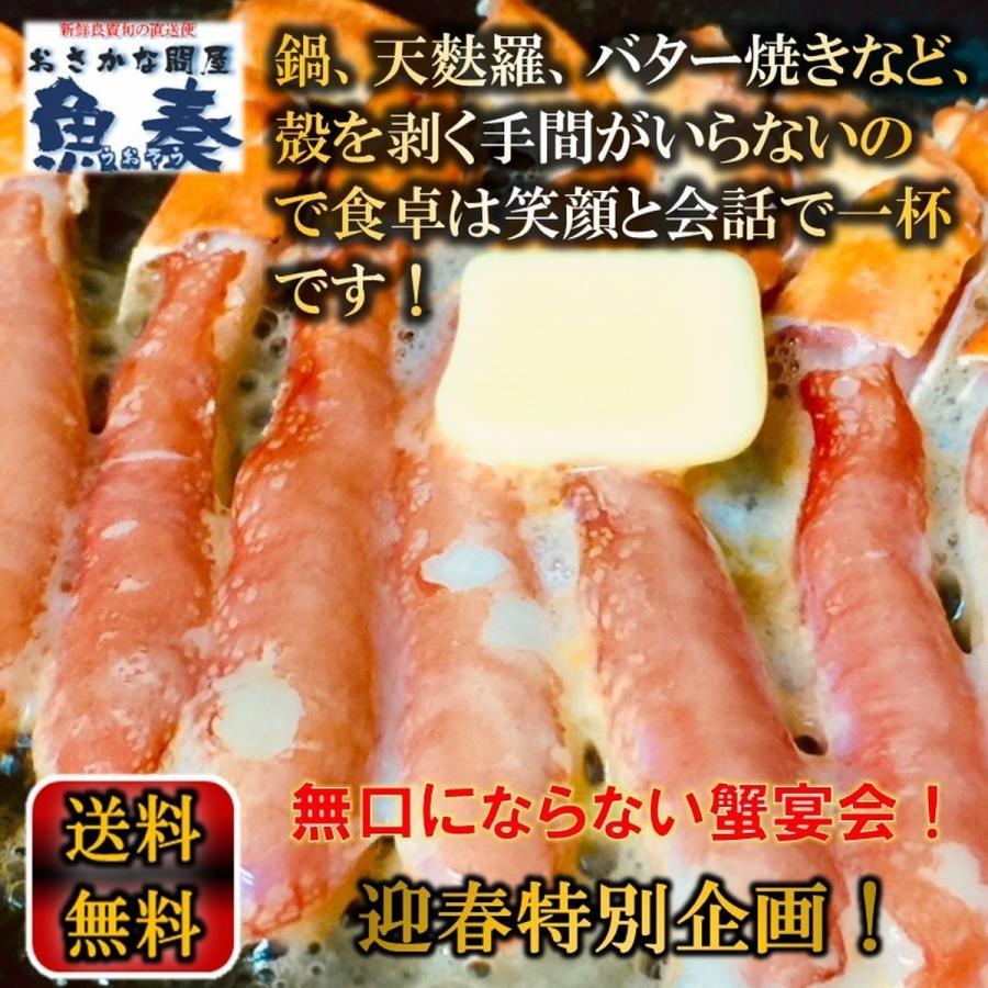 かに カニ 蟹 ずわいがに ズワイガニ カニしゃぶ 用 かに ポーション 1kg (500g×2P) 40本入り 生食 OK 送料無料 歳暮 uosou 04