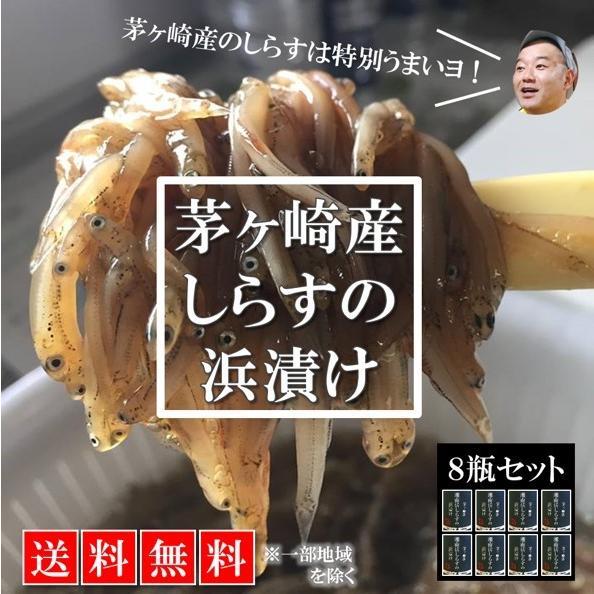 送料無料 新品未使用 ご飯が止まらない 現品 茅ヶ崎産しらすの浜漬け8瓶セット 湘南