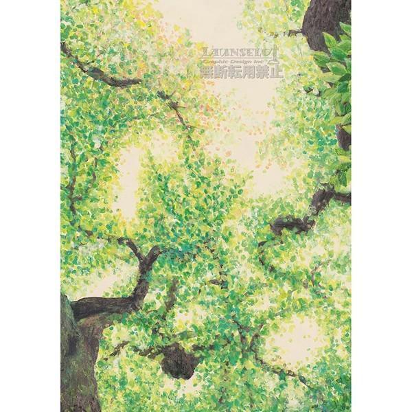 アートポスター アートポスター おしゃれ 森 木 緑 葉っぱ インテリア 吸着シート はがせる マンション 賃貸 / ポイント2倍 / 送料無料