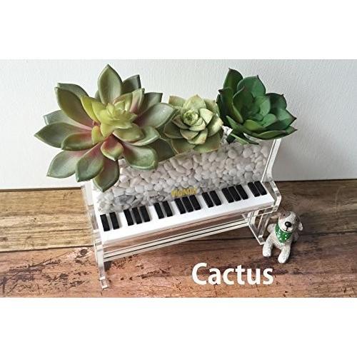 momiji music ピアノボックス (透明) / アクリル製 ハンドメイド 収納 小物入れ プレゼント ギフト お祝い 母の日
