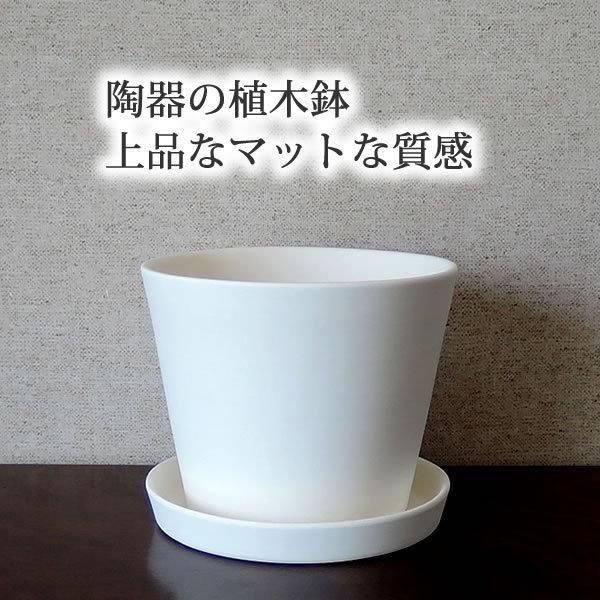 白い陶器の植木鉢 / すり鉢タイプ utyu 06