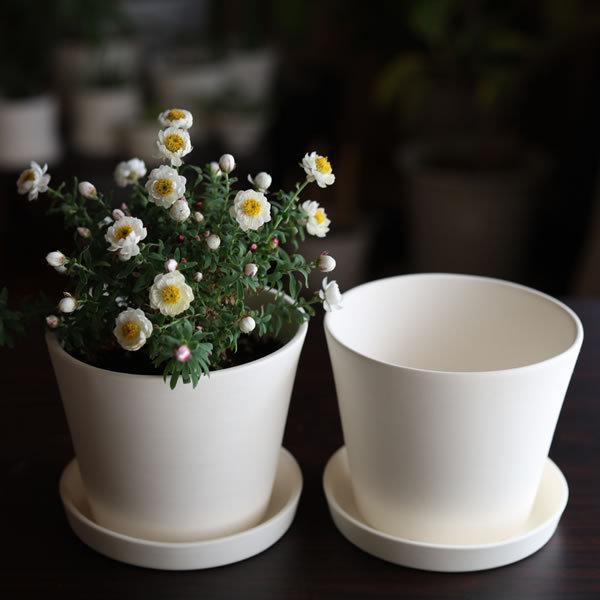 白い陶器の植木鉢 / すり鉢タイプ utyu 08