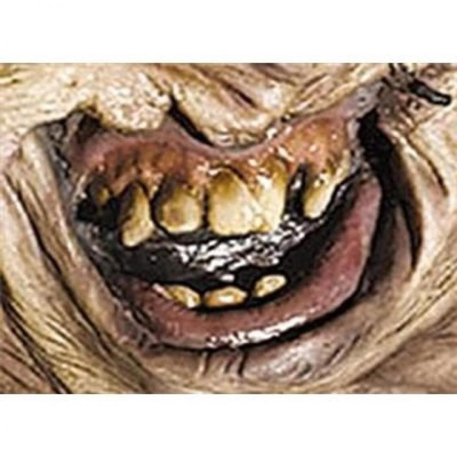 ハロウィン コスプレ 輸入品 Rubie's Costume Leatherface Teeth