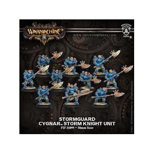 Warmachine Cygnar Stormguard Storm Knight Unit フィギュア 人形 おもちゃ