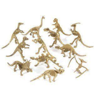 Assorted Dinosaur Fossil Skeleton 5-6