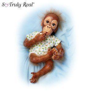 Lifelike Baby Orangutan Doll: Baby Pongo by Ashton Drake ドール 人形 フィギュア