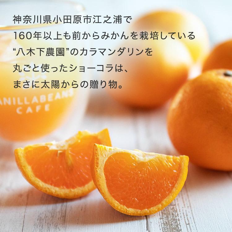 サマーギフト8個入(送料込) [8/16着迄] vanillabeansyokohama 03
