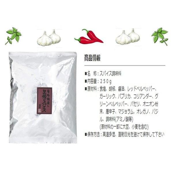黒瀬のスパイス 万能調味料 黒瀬食鳥 かしわ屋くろせ  袋タイプ 250g  送料無料|vape-land|03
