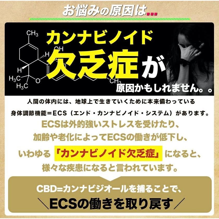 CBD ワックス WAX 高濃度90% 1000mg ブロードスペクラム テルペン配合 AZALEA OGKUSH 選べる3フレーバー  CBDオイル CBDグミ 電子タバコ vape-monster 03
