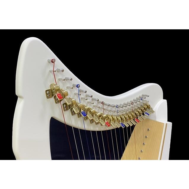 モデラート 20弦 ハープ|vegamusic|02