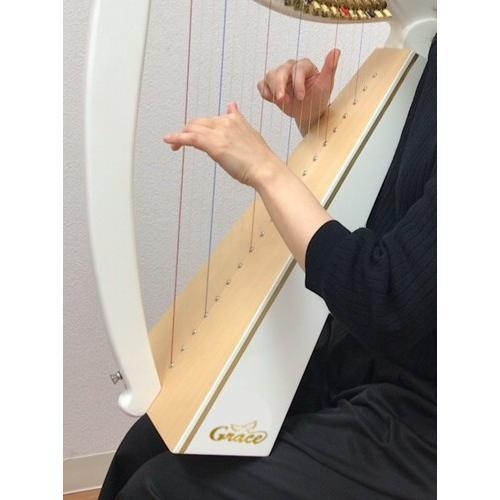 モデラート 20弦 ハープ|vegamusic|08