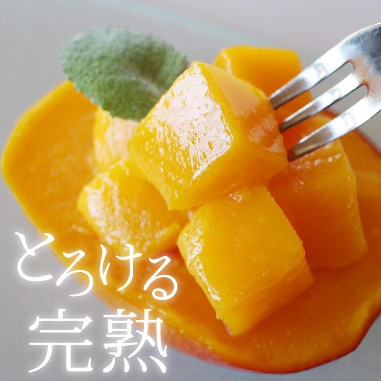 冷凍 マンゴー 1kg 鹿児島県産 送料無料 vegeko