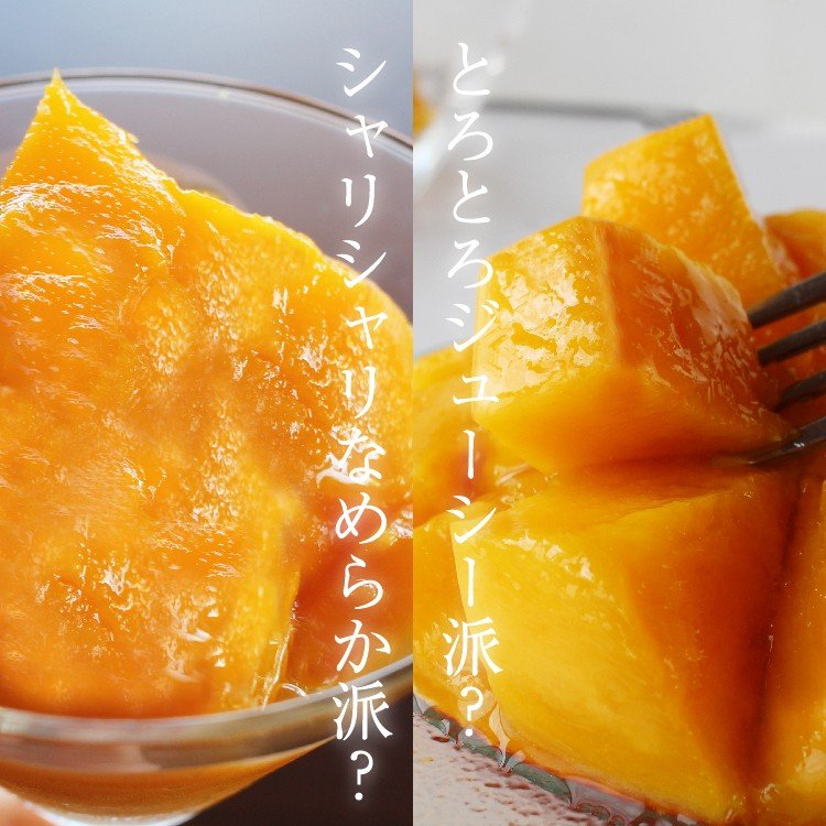 冷凍 マンゴー 1kg 鹿児島県産 送料無料 vegeko 02