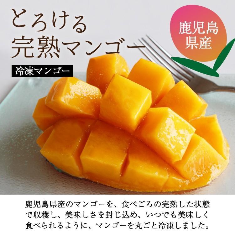 冷凍 マンゴー 1kg 鹿児島県産 送料無料 vegeko 03