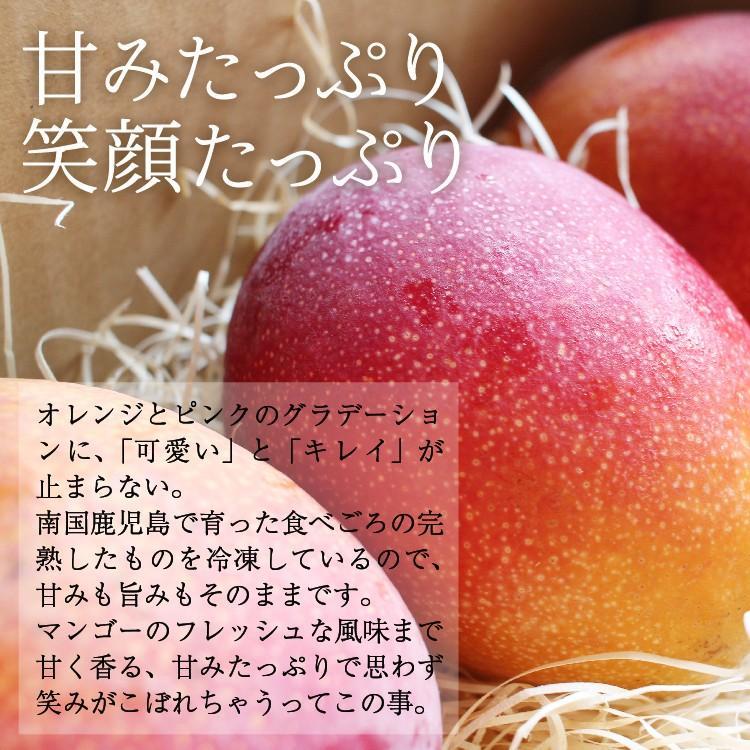 冷凍 マンゴー 1kg 鹿児島県産 送料無料 vegeko 04