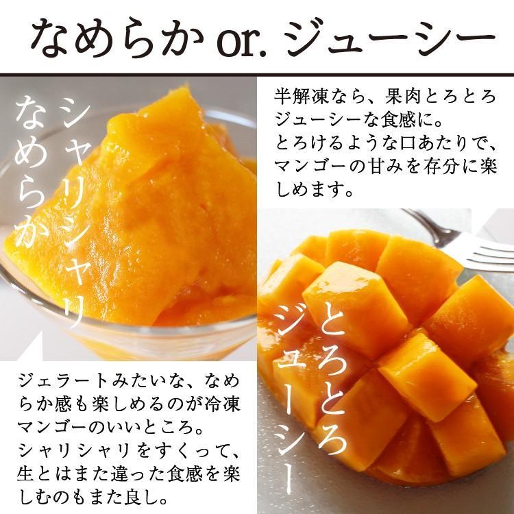 冷凍 マンゴー 1kg 鹿児島県産 送料無料 vegeko 05