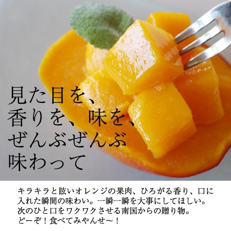 冷凍 マンゴー 1kg 鹿児島県産 送料無料 vegeko 06