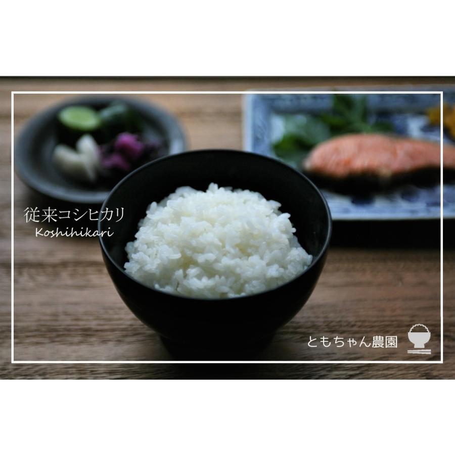 新米 新潟 コシヒカリ 特別栽培米 従来コシヒカリ 新潟県特別栽培米 ともちゃん農園のお米5kg 令和3年度米|vegetable-fruit-igh