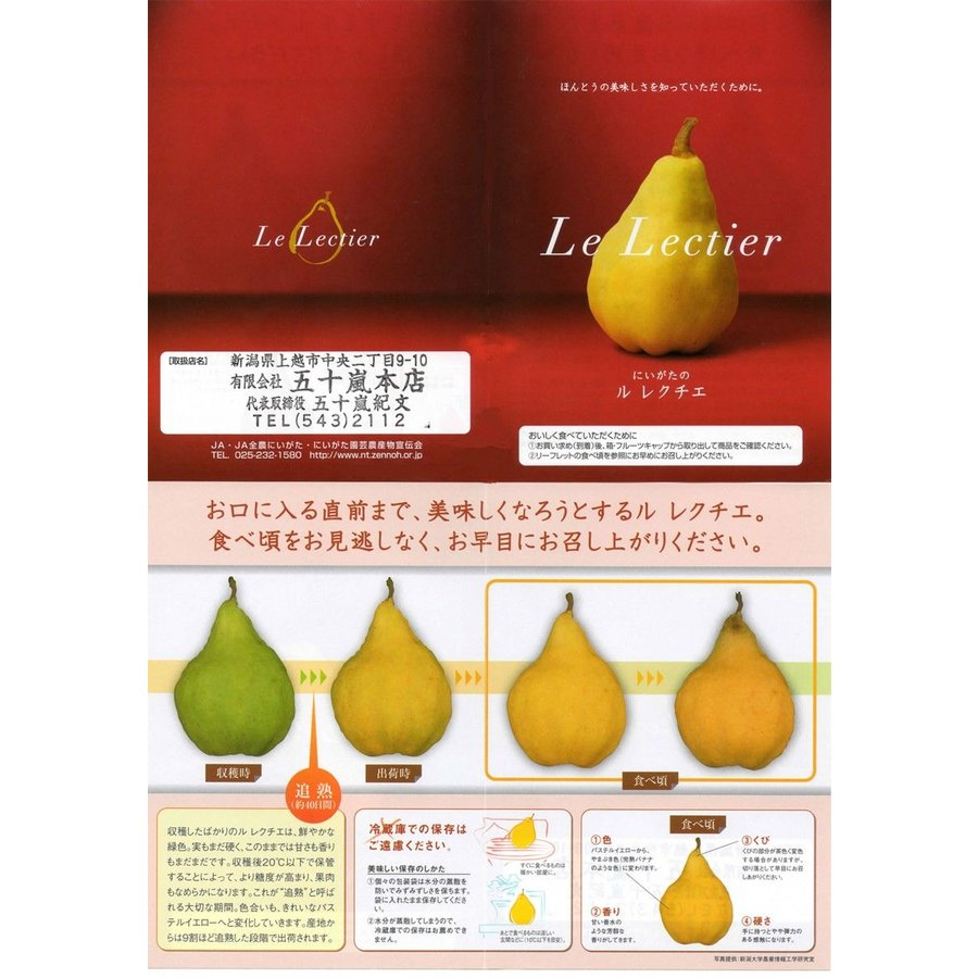 洋なし ル レクチエ 5〜7玉・約2kg 化粧箱  新潟県産 西洋梨 洋梨 vegetable-fruit-igh 02